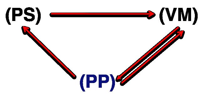 PS-PP-VM