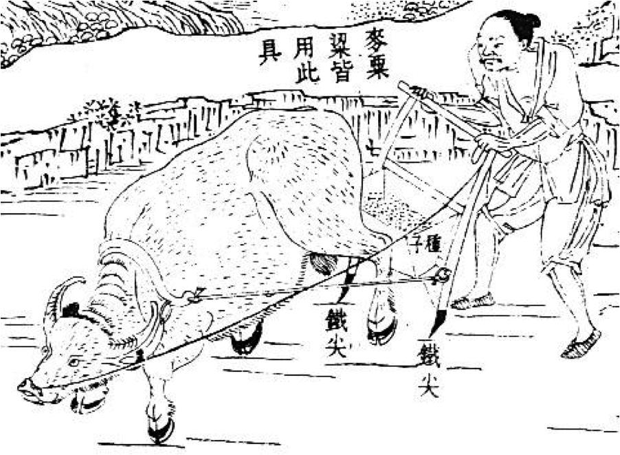 buey arado chino