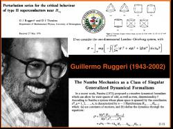 Guillermo Ruggeri (1943-2002): Físico teórico, profesor titular (UCV) y gerente de la ciencia y tecnología venezolana